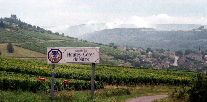 Bourgogne-haute-cote-des-nuits